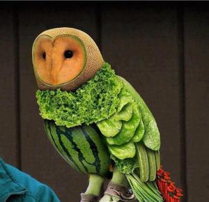 FruitOwl